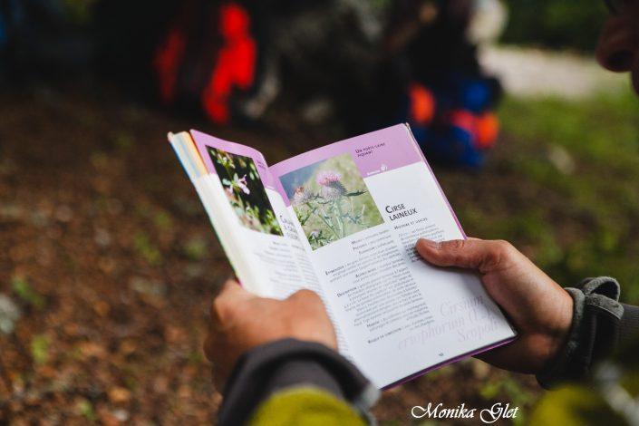 randonnée tourisme